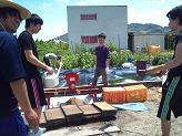 2013-05-農作業2.JPG